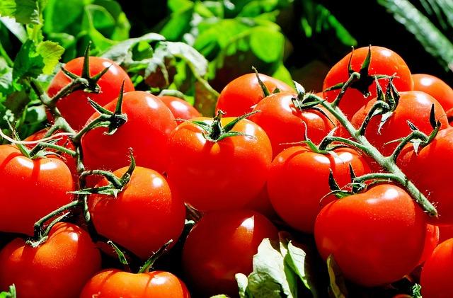 Tomaten machen glücklich(er)