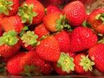 Erdbeeren Low Carb