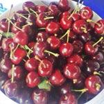 Obst Kirschen