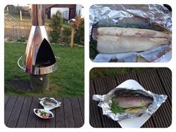 zubereitung-der-geduenstete-forelle-vom-grill